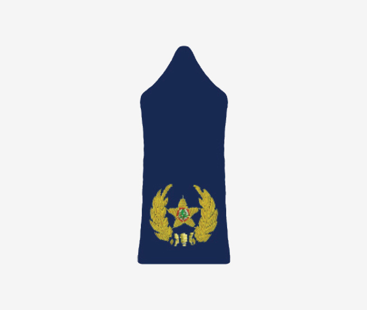 Ranks Official Website Of The Lebanese Army